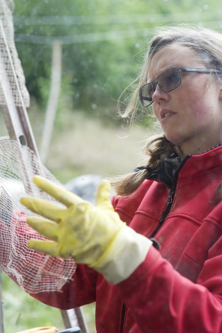 Elenor fortsatte arbete med linätsuppsättning.